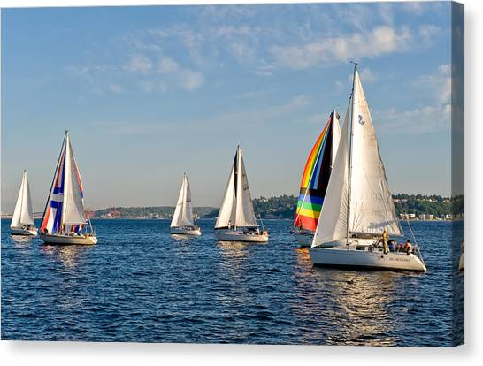 Sailing Group Seattle Canvas Print by Tom Dowd