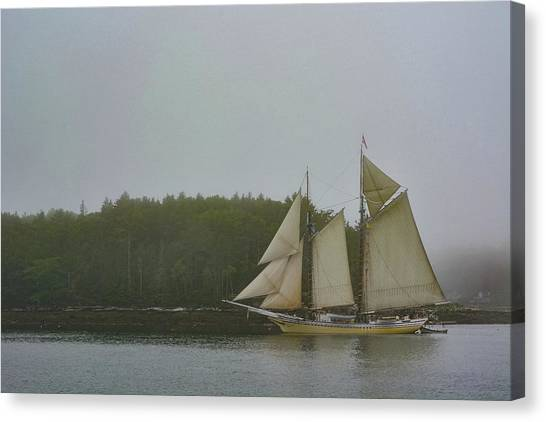 Sailing In The Mist Canvas Print