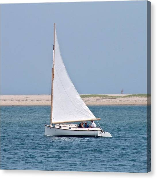 Sailboats Canvas Print - Sailing by Justin Connor