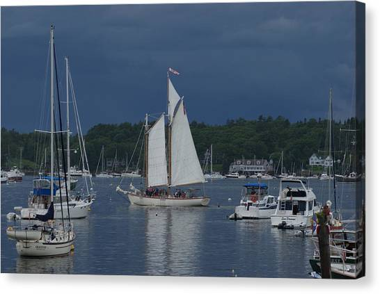 Sailing Canvas Print by Lois Lepisto