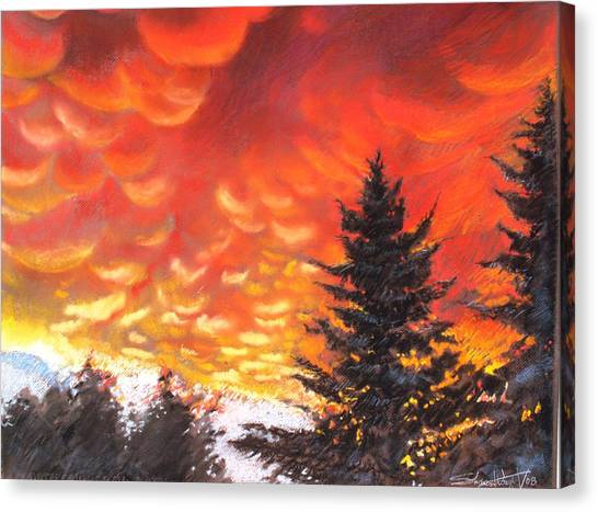 Sailors Delight Canvas Print by Sharon Wright