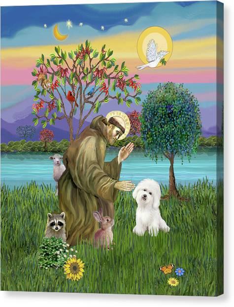 Saint Francis Blesses A Bichon Frise Canvas Print