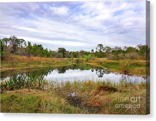 St. Lucie County Canvas Print - Saint Lucie Nature II by Liesl Marelli