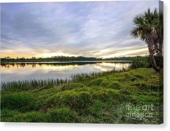 St. Lucie County Canvas Print - Saint Lucie Nature  by Liesl Marelli