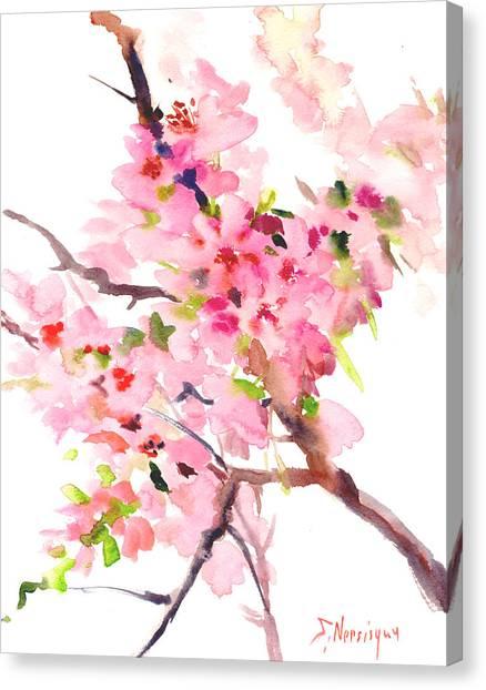 Sakura Cherry Blossom Canvas Print