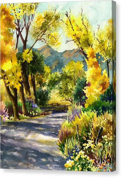 Colorado Canvas Print - Salida Country Road by Anne Gifford