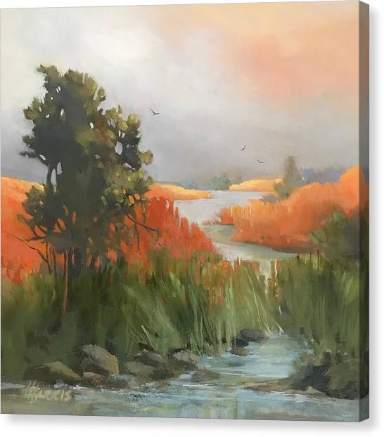 Salmon Creek Canvas Print