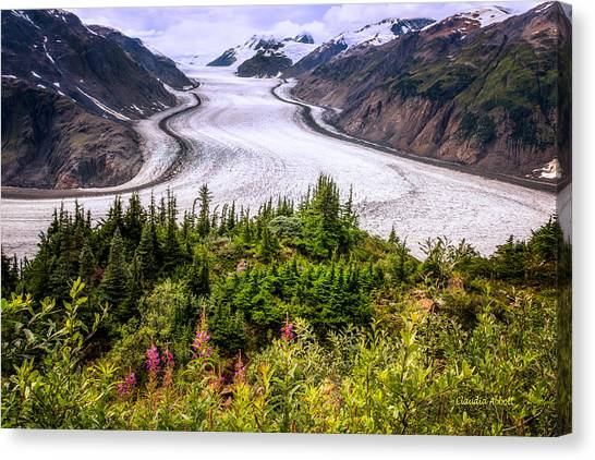Canvas Print featuring the photograph Salmon Glacier by Claudia Abbott