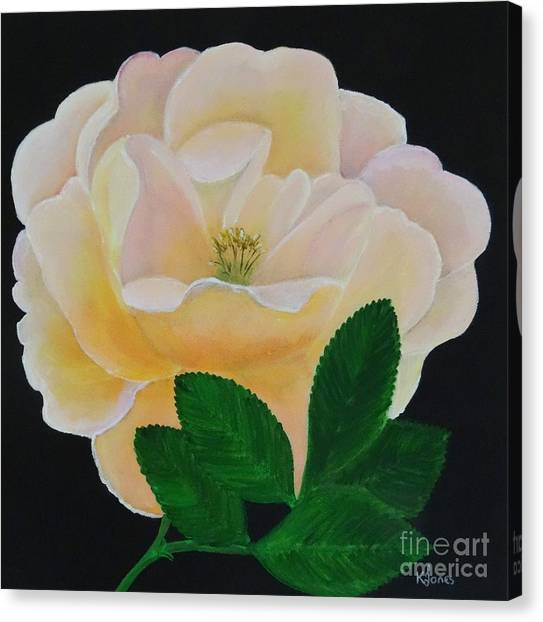Salmon Pink Rose Canvas Print
