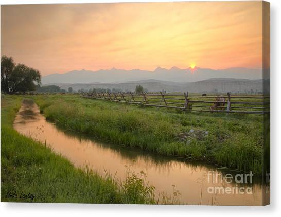 Salmon Sunrise Canvas Print