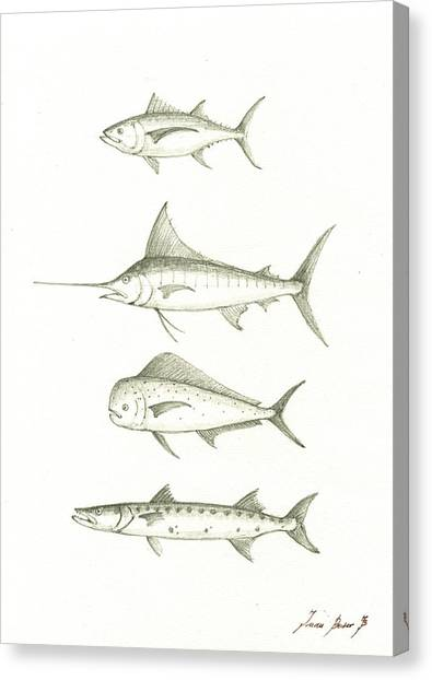 Fishing Canvas Print - Saltwater Gamefishes by Juan Bosco