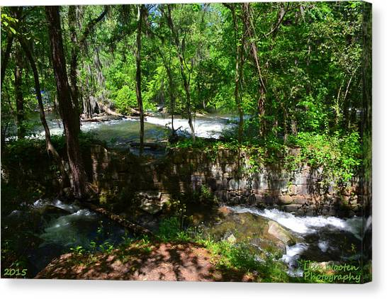 Saluda River Columbia Sc Canvas Print