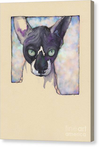 Sam The Sphynx Canvas Print
