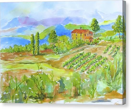 Vineyard At San Gimignano Canvas Print