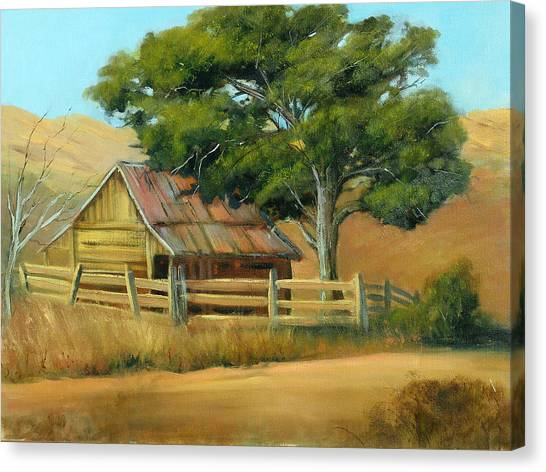 San Joaquin Barn Canvas Print by Sally Seago