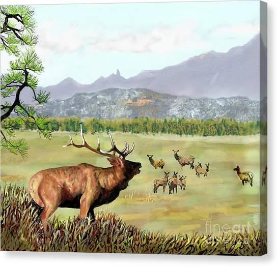 San Juan Elk Vista Canvas Print