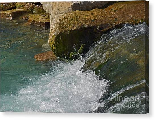 Sun Belt Canvas Print - San Marcos River Texas Falls Area by Ray Shrewsberry