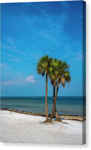 Calm Down Canvas Print - Sand And Palms by Marvin Spates
