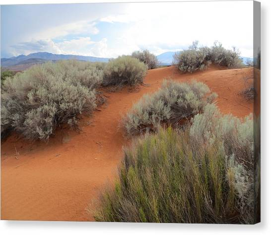 Sand And Sagebrush Canvas Print