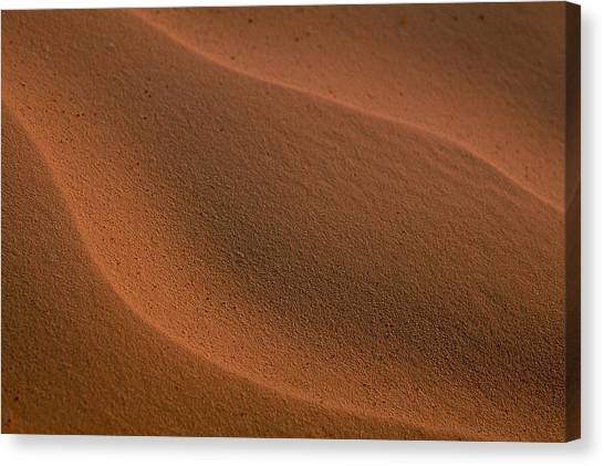 Sand Curves Canvas Print