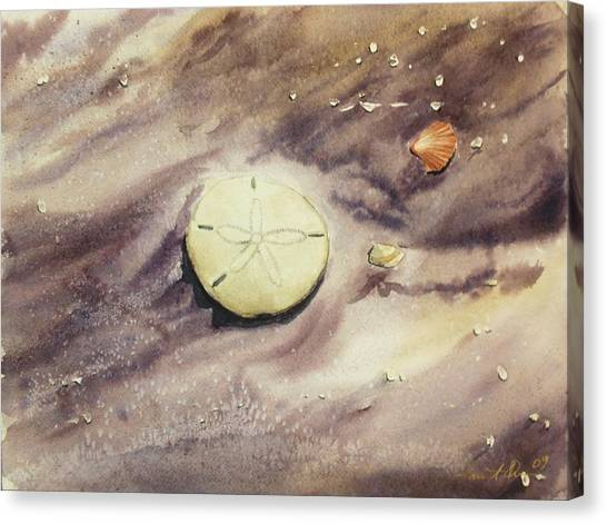 Sand Dollar Canvas Print by Lane Owen