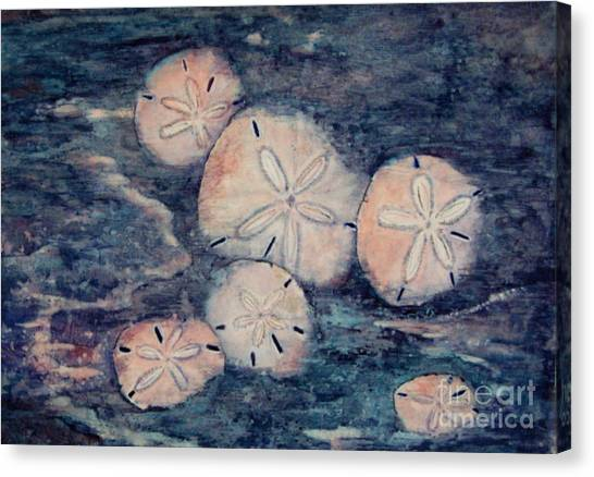 Sand Dollars Canvas Print