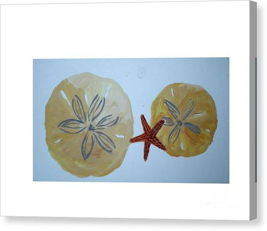 Sand Dollars With Star Fish Canvas Print by Hal Newhouser