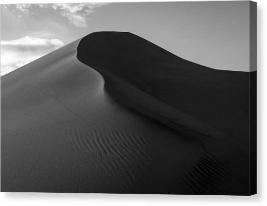 Sand Dune Beetle Tracks Canvas Print