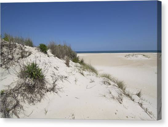 Sand Dunes On Assateague Island National Seashore - Maryland Canvas Print by Brendan Reals