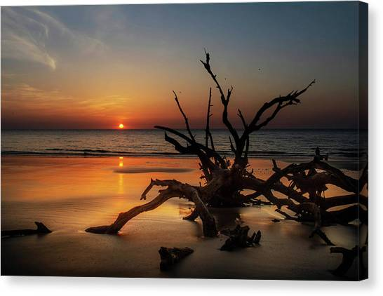 Sand Surf And Driftwood Canvas Print