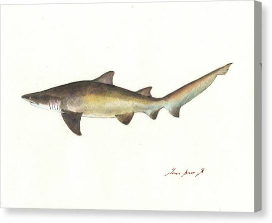 Sharks Canvas Print - Sand Tiger Shark by Juan Bosco
