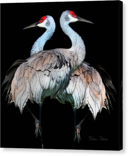 Sandhill Crane Mirror Image Canvas Print