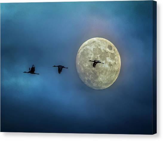 Canvas Print featuring the photograph Sandhill Cranes With Full Moon by Patti Deters