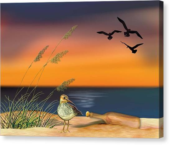 Sandpiper For Angel Canvas Print