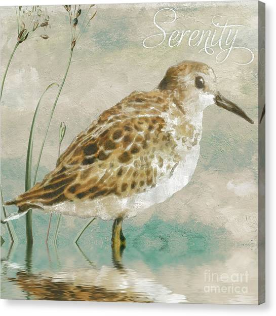 Sandpipers Canvas Print - Sandpiper I by Mindy Sommers