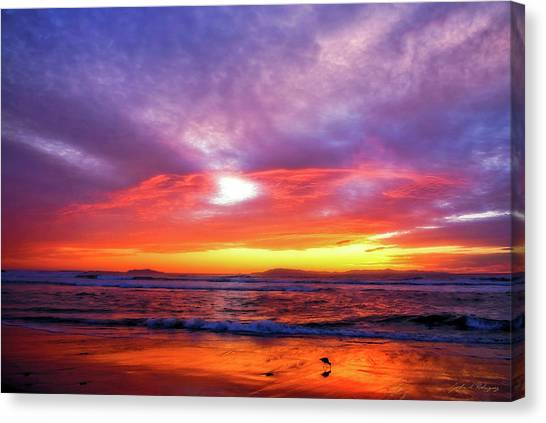 Sandpiper Sunset Ventura California Canvas Print