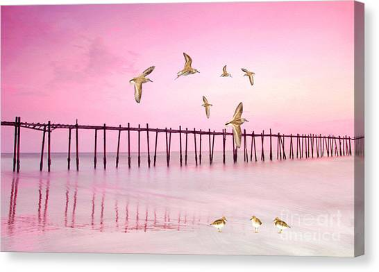 Sandpipers Canvas Print - Sandpiper Sunset by Laura D Young