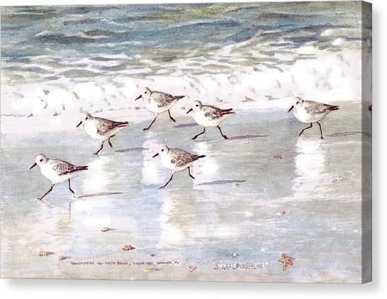 Sandpipers Canvas Print - Sandpipers On Siesta Key by Shawn McLoughlin