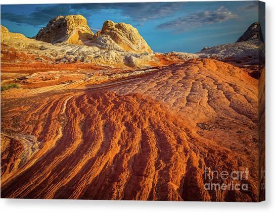 Arizona Coyotes Canvas Print - Sandstone Ropes by Inge Johnsson