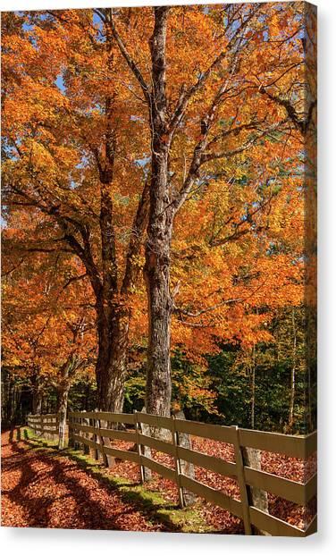Sandwich Autumn Canvas Print