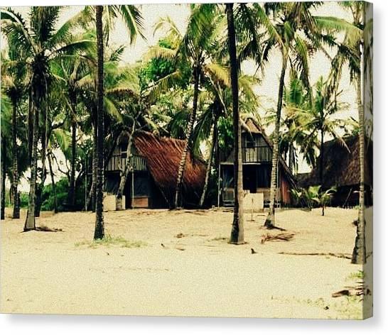 Palm Trees Canvas Print - Sandy  Beaches by Mellisa Lockyer