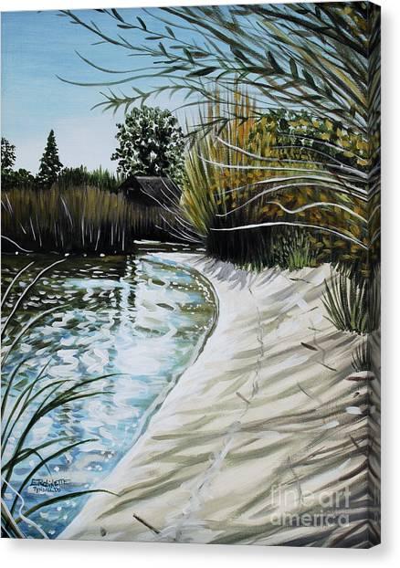 Sandy Reeds Canvas Print
