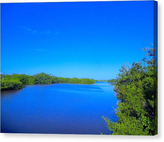 Sanibel Island, Florida Canvas Print