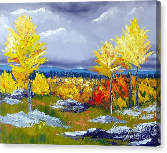 Santa Fe Aspens Series 5 Of 8 Canvas Print