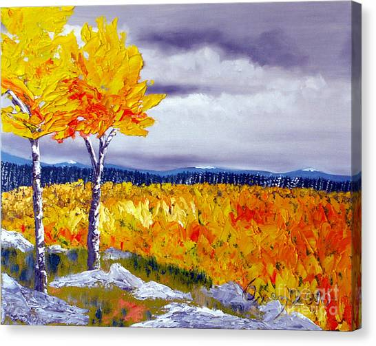 Santa Fe Aspens Series 7 Of 8 Canvas Print