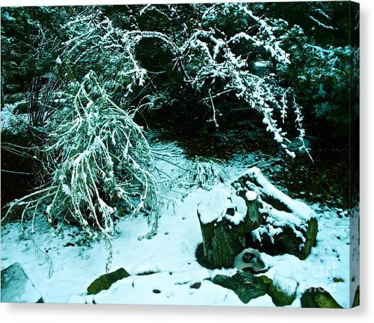 Santa Fe Snow Canvas Print by Chuck Taylor