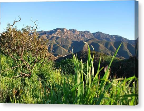 Santa Monica Mountains Green Landscape Canvas Print