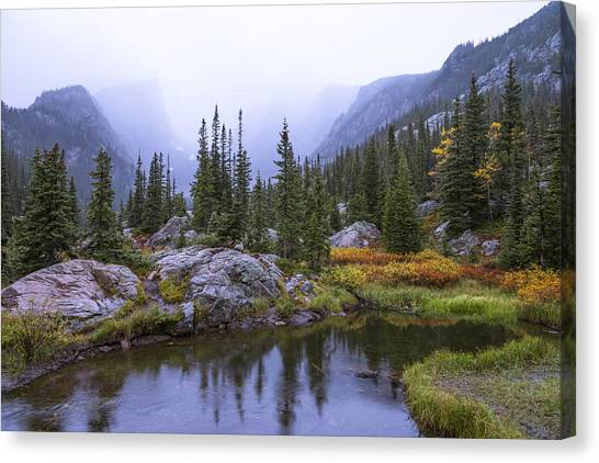 Colorado Rockies Canvas Print - Saturated Forest by Chad Dutson