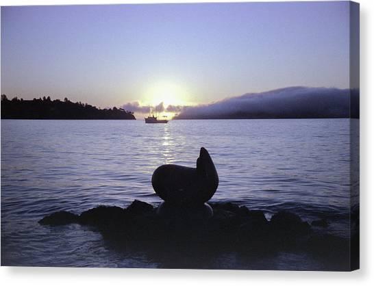 Sausalito Morning Canvas Print