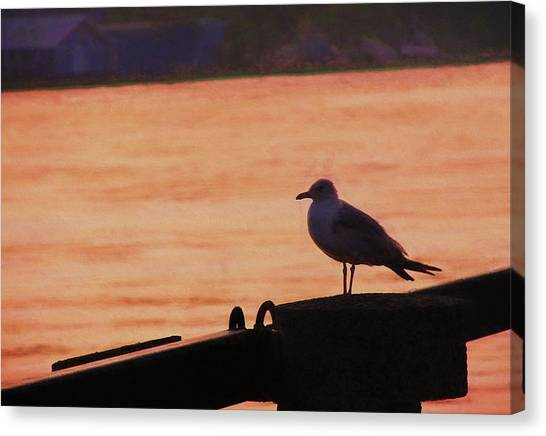 Savannah River Canvas Print by JAMART Photography